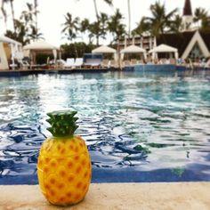 #hawaii #poolside #pineappledrink
