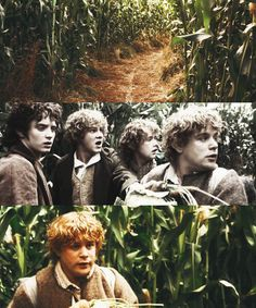 """We haven't left the Shire. What could possibly happen?"" Mr. Frodo's insane cousins can happen for one thing!"