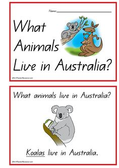Australian Animals Concept Book - What Animals Live in Australia? A little printable book for children to become authors and illustrators. Australia Map, Australia For Kids, Australia Crafts, Australia Animals, Australia Living, Australia Day Craft Preschool, Australia School, Outback Australia, Animais