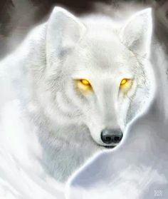 What do you see in those yellow eyes?