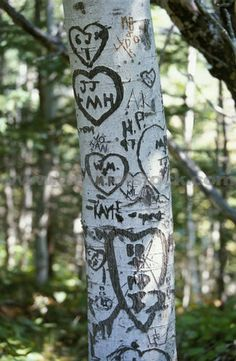 97...carve your names in a tree...he did this for our one year anniversary and we still go visit that tree, something special to us :)