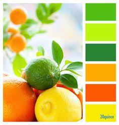 Color palettes – Kleurenpaletten – color of life