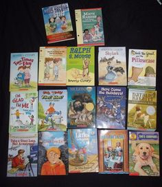 Huge Childrens Book Lot RL 2 3 Chapter Scholastic 17 Books