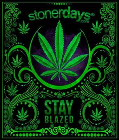 April 20 is Duh. Weed Wallpaper, Locked Wallpaper, Weed Backgrounds, Diy Resin Tray, Weed Jokes, Weed Pictures, Weed Pics, Marijuana Facts, Herbs