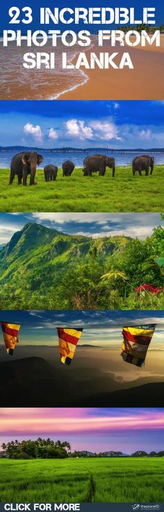 #VisitSriLanka Discover the beauty of Sri Lanka with these Photos | The Planet D Adventure Travel Blog | We have a soft spot for Sri Lanka, it is often at the top of our list of places we recommend to visit. We hope that after viewing these photos, you will feel the same way