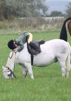Reminds me of my Welsh #pony days <3 For #horse lover gifts, check out the NorthernHare.Etsy.com
