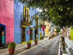 "It's full of colorful buildings and quaint streets, like Callejon de los Sapos, which translates to ""alley of the frogs."""