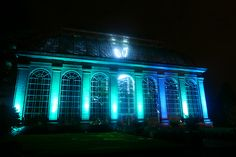Botanic Lights at the Royal Botanic Garden in Edinburgh is a truly magical event! The Glasshouse was lit up in all the colours of the rainbow.