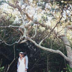 Wedding in South Africa South African Weddings, Tree Wedding, Strand, Wedding Photos, Wedding Ideas, Bride Groom, Marriage, Wedding Photography, Couple Photos