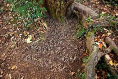 James-Brunt-Natural-Materials-Land-Art-England - Artist Spends Hours Arranging Natural Objects Into Stunning Mandalas, Leaves Them For You To Find - Art Et Nature, Nature Artwork, All Nature, Land Art, Art Environnemental, Ephemeral Art, Forest Art, Environmental Art, Art Festival