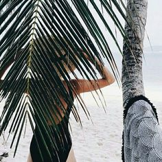 palm tree photos | summer | beaches | getaway | hats | black one piece