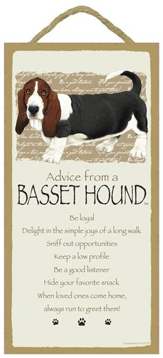 Advice from a Basset Sign