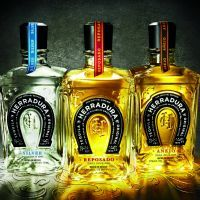 herradura tequilas silver anejo reposado Herradura Silver Tequila: Better than Patron for Almost Half the Price Tequila Day, Tequila Tasting, Best Tequila, Mixed Drinks, Fun Drinks, Yummy Drinks, Beverages, Tequila Reviews, Silver Tequila