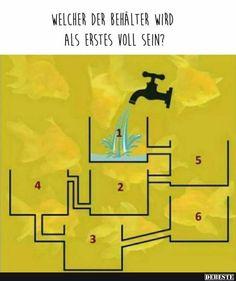Welcher der Behälter wird als erstes voll sein? | Lustige Bilder, Sprüche, Witze, echt lustig