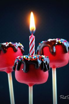 Pint Sized Baker: Happy Birthday Cake Cake Pops- IDEA Put a candle in them! Best Birthday Cake Recipe, Birthday Cake Pops, Happy Birthday Cakes, Cake Cookies, Cupcake Cakes, Shortbread Cookies, Jack Skellington Cake, Fudge, Cookie Pops