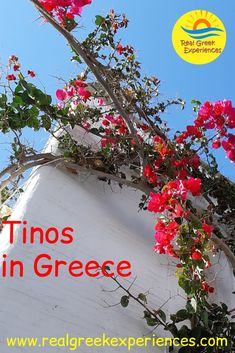 Are you looking for an off-the-beaten-track Greek island with an authentic atmosphere? Tinos definitely fits the bill! Read on for the best things to do in Tinos Greece. #tinos #greece #greekislands #cyclades #bestthings #traveltogreece