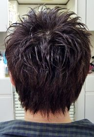 Image result for Layered Short Spiky Haircuts for Women Goinging Back