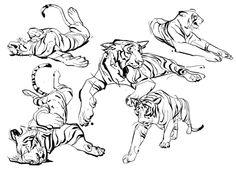 feline pose ref