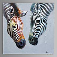 Pintados+à+mão+AnimalModerno+1+Painel+Tela+Pintura+a+Óleo+For+Decoração+para+casa+–+EUR+€+130.52
