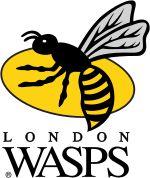 London Wasps (England - Europe)