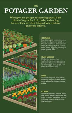Garden Planning Plants flowers for the potager garden - Learn how to design your kitchen garden with some kitchen garden plans and potager design examples. List of garden plants, flowers and herbs for the potager