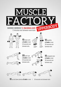 Muscle Factory is a workout designed to help you develop a lot of strong, dense muscle. Weight Training Workouts, Gym Workouts, Workout Men, Tummy Workout, Workout Routines, Superhero Workout, Darebee, Dumbbell Workout, Aerobic Exercises