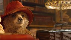 Paddington gets bear hug at cinemas Oso Paddington, Hugh Bonneville, Excellent Movies, Welcome To The Family, Martin Freeman, Brown Bear, Storytelling, Cinema, Hats