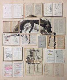 Ink Paintings Spread Through Arrangements of Vintage Books by Artist Ekaterina Panikanova Design Museum, Photo Projects, Art Projects, Book Installation, Colossal Art, Collage Artists, Collages, Wooden Art, Ink Illustrations