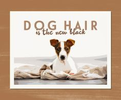 """DOG HAIR is the new black"" ~ Jack Russell Terrier My own original design. Printed with archival inks on Rag Photographique, 100% cotton museum grade white Fine Art Paper. Developed to exceed museum s"