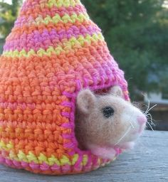 Hamster House...or fun for zuzu pets...