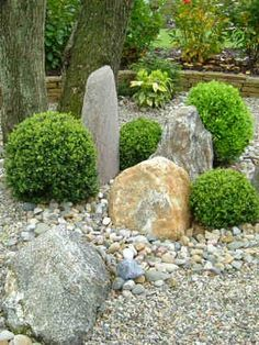 Creating texture and interest in the garden with minimal plants and different sized rocks