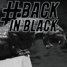 Sunday January 12th 2014 Carolina Panthers