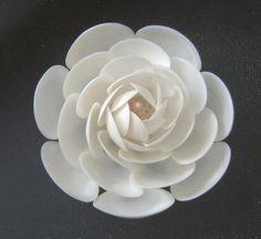 Shell Art.  Delicate Camilla.