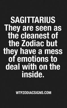 Chinese Horoscope And The Zodiac Horoscope Signs Sagittarius, Sagittarius Love, Zodiac Signs Sagittarius, Zodiac Star Signs, My Zodiac Sign, Astrology Zodiac, Astrology Signs, Zodiac Facts, Daily Horoscope