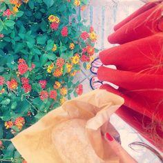 Freshly baked bread for breakfast and hair still wet from my morning swim. H A P P Y #ladolcevita #love #grateful #sicily #morningslikethese @ettingerlondon #MyColourOfSummer