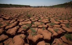 Report: World faces 'insurmountable' water crises by 2040 | Al Jazeera America