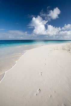 Shoal Bay, Anguilla...the most amazing, white sand beaches can be found on Anguilla... ahi quiero estar