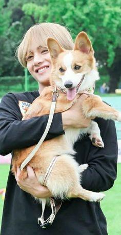 ♥♥♥Taehyung with a corgi♥♥♥ Bts Taehyung, Jimin, Namjoon, Bts Bangtan Boy, Bts Boys, Seokjin, Daegu, Foto Bts, Bts Photo