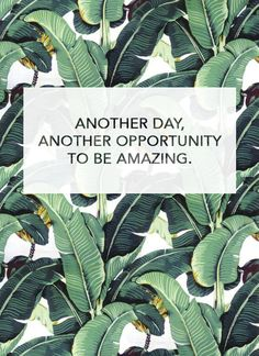 Another opportunity to be amazing!