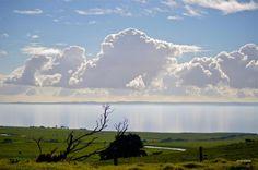 Road to Phillip island,Victoria