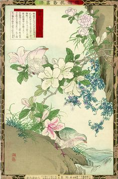 Japanese woodblock print from the 1883 1st Edition Album of Flowers and Birds by…