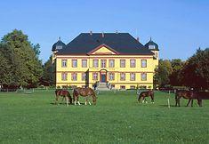 Schloss Hohen Luckow in Mecklenburg-Vorpommern (Familie von Bassewitz, Familie von Brocken)