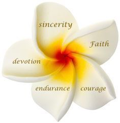 meaning of the Plumeria petals