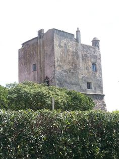 Torre Puccini