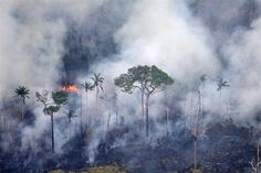 As some of us were heading off for the Easter holiday weekend, the Brazilian government was quietly releasing deforestation trends showing an increase in deforestation for the first time in five years.  These numbers use the DETER rapid response satellite system, a system that provides estimates of deforestation rates every month.
