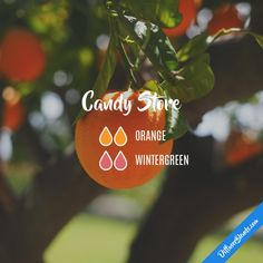 Candy Store - Essential Oil Diffuser Blend