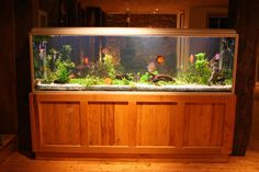 Your Guide to Buying a Tropical Fish Tank | eBay