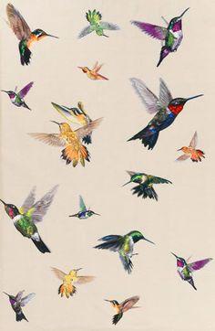 Hummingbird Ivory by Alexander Mcqueen - Google Search