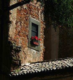 Window, Orvieto, May 2016 Umbria Italy, Windows And Doors, Gates, World, Life, Gate, Peace, The World