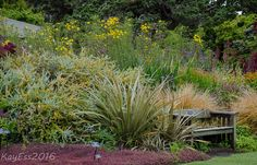 GardenBook: Summer at Mendocino Coast Botanical Garden